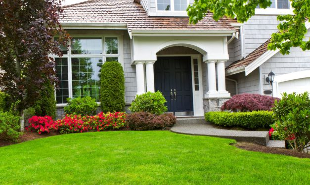 6 yard hacks to make your property more attractive