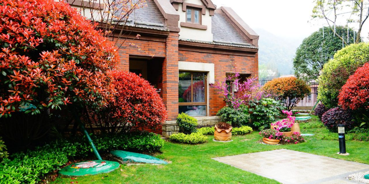 6 Tips for Finding Gardening Supplies