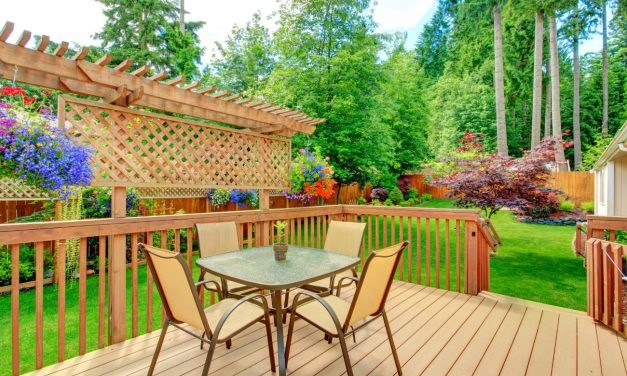 7 Ideas To Upgrade Your Backyard