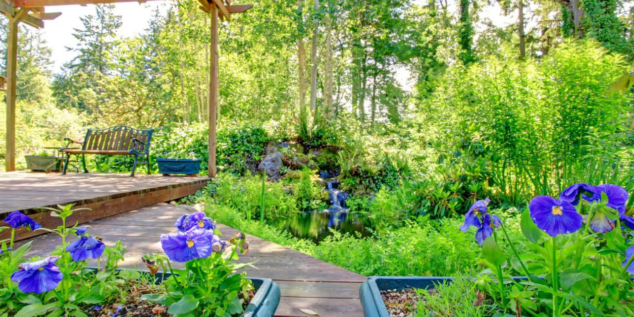 How To Landscape Around A Deck For A Backyard