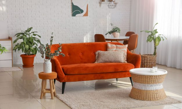 Living Room Color Trends You Must Know