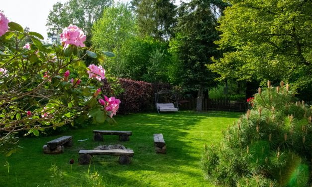 Tips To Help Make Your Yard Look Awesome